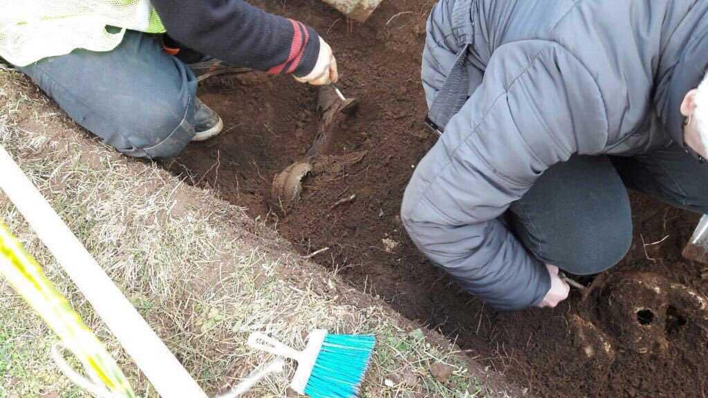 Αποτέλεσμα εικόνας για οστά πεσόντων στο Αλβανικό Μέτωπο